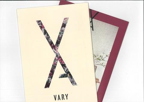 インテリア重視のリノベーション「VARY」の資料をお届け