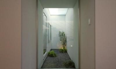 岩国の家 (2階テラス下の光庭)