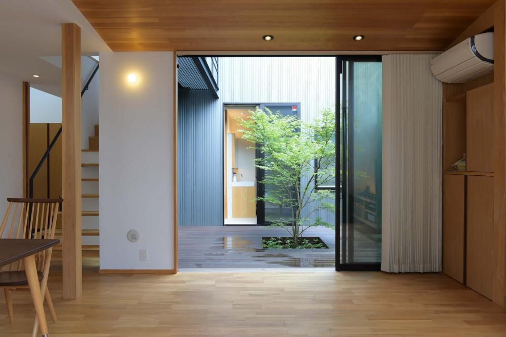埼玉県北鴻巣の家 (リビングから中庭を見る)