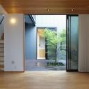 埼玉県北鴻巣の家の写真 リビングから中庭を見る