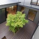 埼玉県北鴻巣の家の写真 中庭を見下ろす