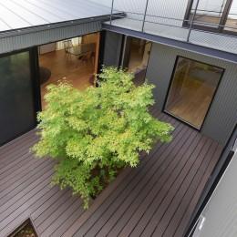 埼玉県北鴻巣の家 (中庭を見下ろす)