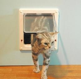 プライバシーテラスの「ネコと一緒に住む家」 (ネコドア)