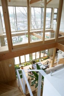 室内温室が楽しい!!土間テラスのある家 (キャッツウォークからの見下ろし)