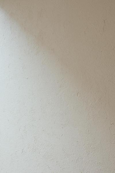 壁 (中庭のある家)