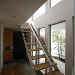 善福寺の家 (オープン型階段)