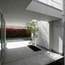 善福寺の家 (中庭)