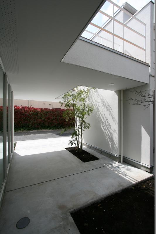 善福寺の家の写真 中庭