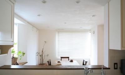 O邸 (カウンターキッチンからの眺め)
