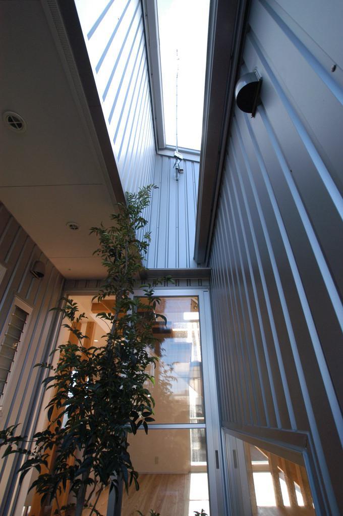 都城市 D邸の部屋 中庭から見上げる