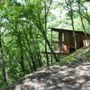 大きな栗の木の下の家の写真 美しい大自然に囲まれた外観