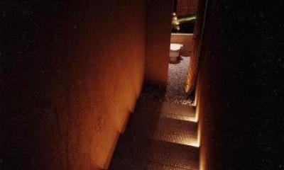 葉山の海荘 (ライトアップした階段の先のトイレ)