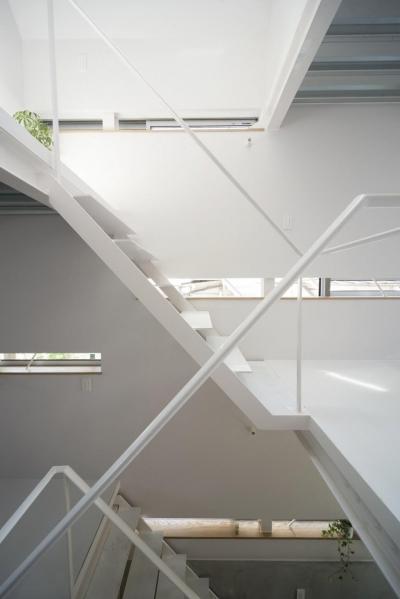 ミナミセンゾクのいえ (オープン型階段)