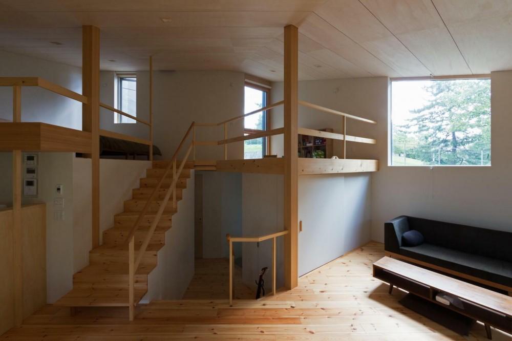 平岸の家 SGW (居間から玄関、2階を見通す)