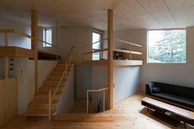 平岸の家 (居間から玄関、2階を見通す)