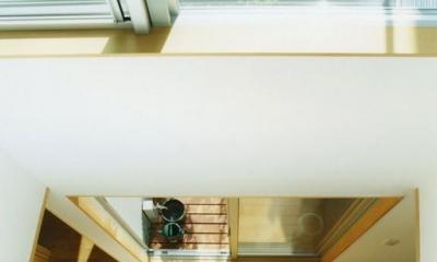 大塚新町の家 (2階から見下ろす)