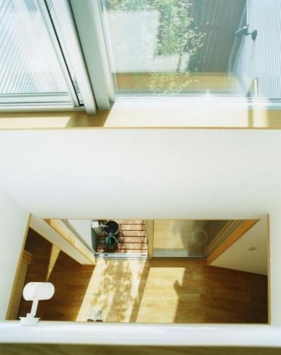 2階から見下ろす (大塚新町の家)
