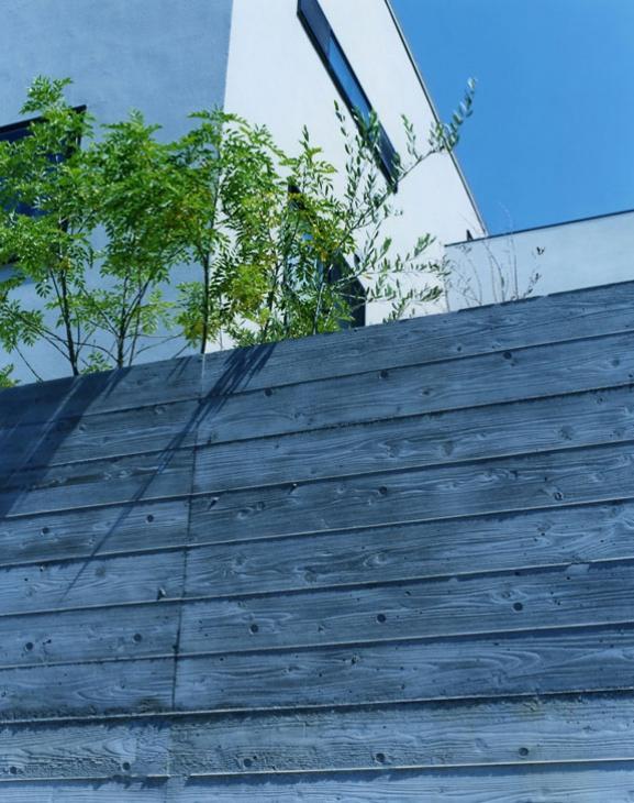 鵠沼の家の部屋 杉板型枠のコンクリート壁