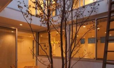 松江市東奥谷建売住宅 (1階中庭)