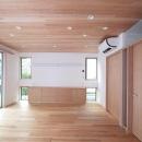 板貼天井のリビング (ダイニング側より西面を望む)