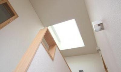 関町北の家 (トップライトから光が降りそそぐ階段)