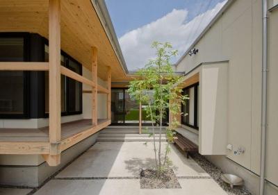 中庭からの眺め (七郷の平屋)