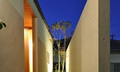 コンクリートの目隠しがある玄関アプローチ ゴトオリの家