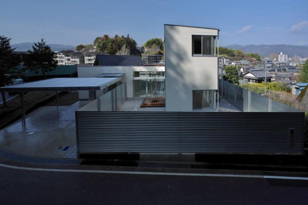 水盤のある家 (広々した庭がある空間)