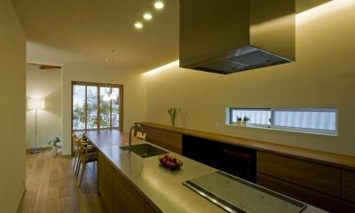 割田の家 (キッチン2)