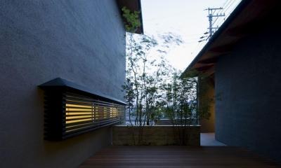 割田の家 (中庭夜景)