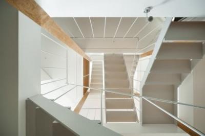 各スペースを繋ぐ階段を見上げる (上大崎の家)