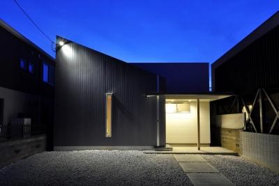 Yoshi-house (ファサード(夜景))