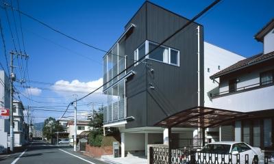 Y-house (ファサード)