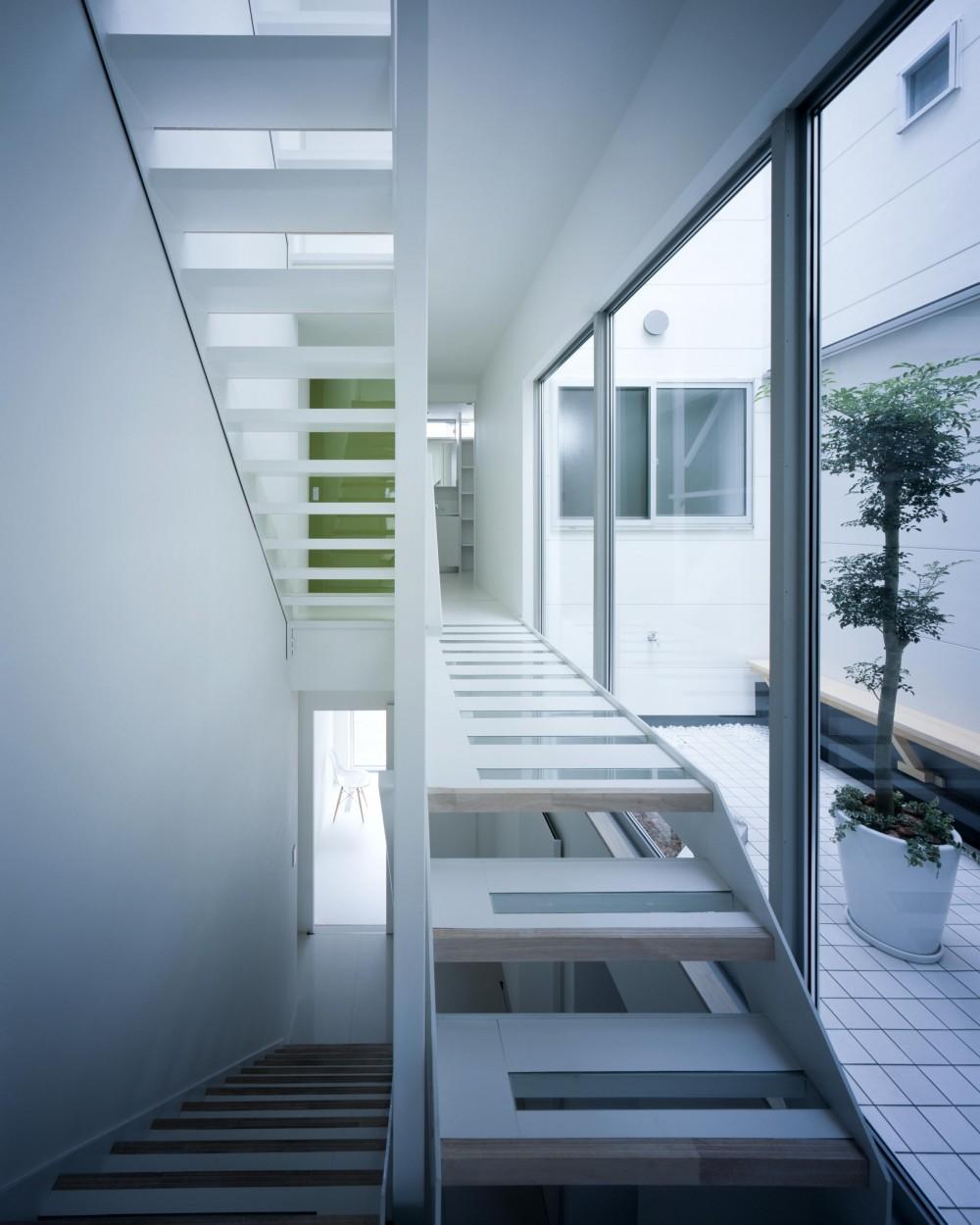 Y-house (廊下・階段)