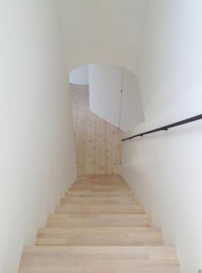日野町のいえ (階段から見下ろして)