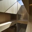 今宮の家の写真 壁がオープンになっているガラスの天井空間