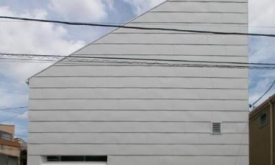 ガルバリウム鋼板張りの西側外観|目黒区M邸