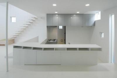 目黒区M邸 (オリジナルのL型キッチンとカウンター)
