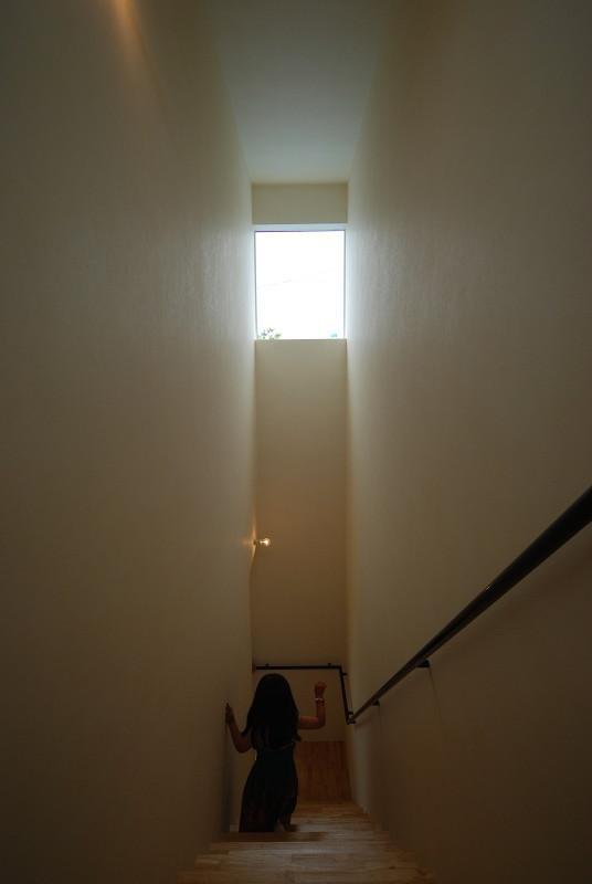 Matryoshka house #113の部屋 光が降り注ぐ階段