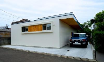 Matryoshka house #113 (外観)