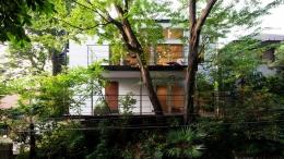 切り通しの家 (緑に囲まれた住まい)