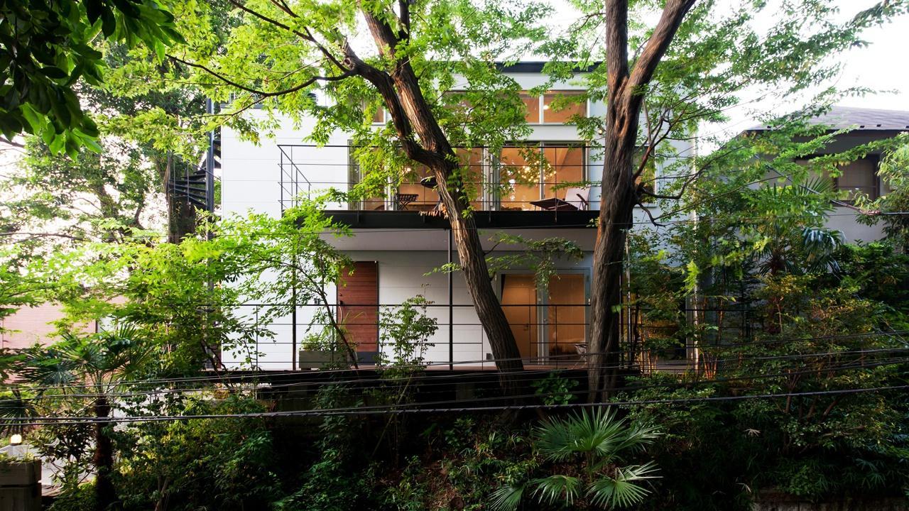切り通しの家の写真 緑に囲まれた住まい