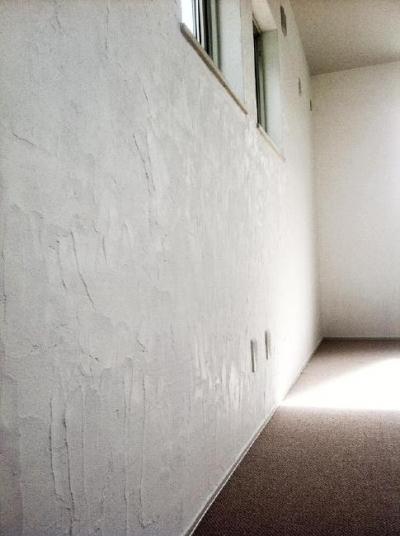 ハンドメイドのスイス漆喰壁 (ピアノのある家)