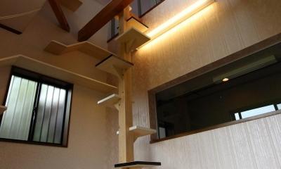 猫と暮らす家 ~ 吹き抜けがない建売の住宅に吹き抜けとキャットウォークをつくって (キャットタワー 吹抜け)