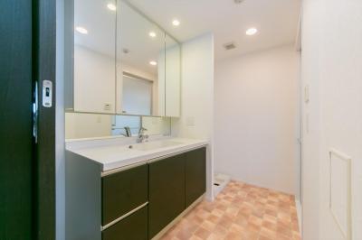 洗面室 (『Beach Style』オーシャンビューを絵画のように楽しむ暮らし。)