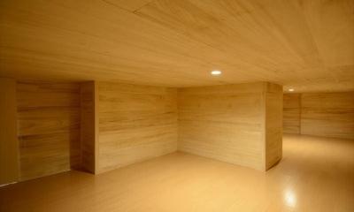 西小保方の家 (床下収納)