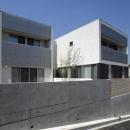 吹田の家の写真 2棟の空間をもつ外観