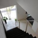 吹田の家の写真 階段からシンボルツリーを眺める
