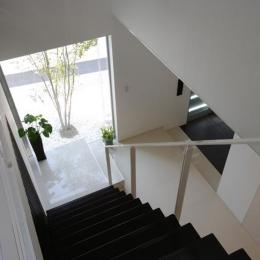 吹田の家 (階段からシンボルツリーを眺める)