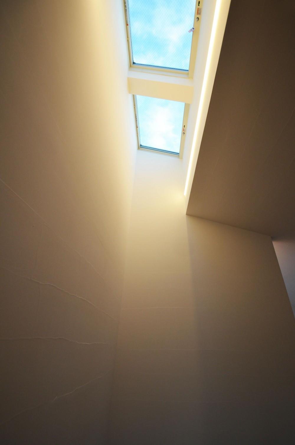 柿の木台M邸-天窓付き階段を中央に配する2階リビングの家- (トップライト)